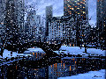 Central Park Limited Edition Print - Alexei  Butirskiy