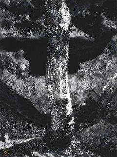 California Portfolio Four: Castle Rock, Summit Road Above Saratoga  Limited Edition Print - Ansel Adams