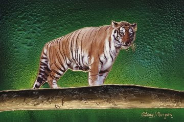 Tiger 24x36 Original Painting by Juergen Aldag