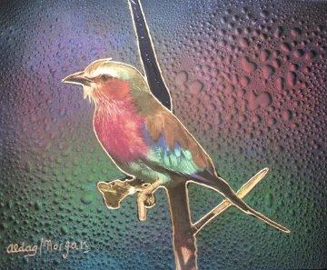 Bird 16x20 Original Painting by Juergen Aldag