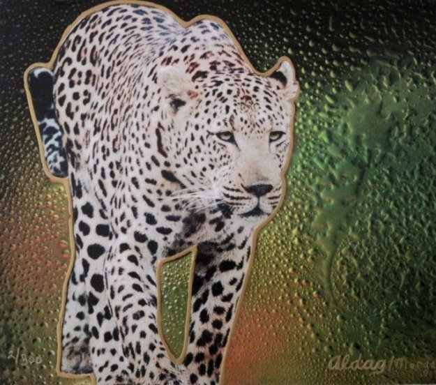 Cheetah II 16x20 Original Painting by Juergen Aldag