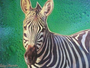 Zebra 16x20 Original Painting by Juergen Aldag