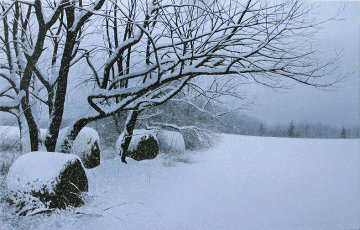 Quiet Snowfall AP  2003 Limited Edition Print - Alexander Volkov