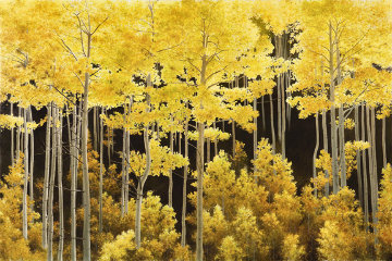 Aspen Light AP Embellished 2010 Limited Edition Print - Alexander Volkov