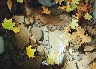 Autumn Leaves 2010 35x45 Original Painting by Alexander Volkov - 0