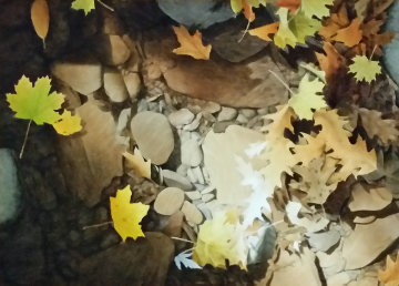 Autumn Leaves 2010 35x45 Original Painting - Alexander Volkov