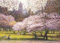 Blossoms And Buildings Limited Edition Print - Harold Altman