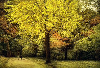 Yellow Tree 1987 Limited Edition Print by Harold Altman - 0