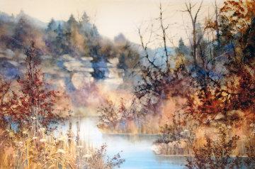 Untitled Watercolor (Landscape) 30x38 Watercolor - Diane Anderson