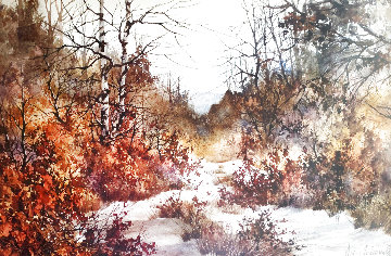 Autumn Woods 1985 Limited Edition Print - Diane Anderson