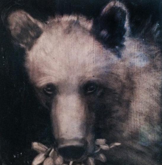 Black Bear 2000 39x36 Original Painting by Joe Andoe