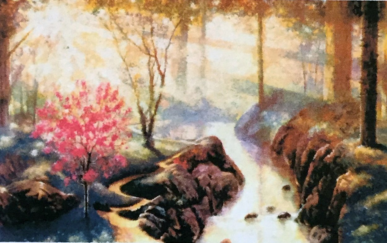 Forest Stream AP  Limited Edition Print by Andrew Warden