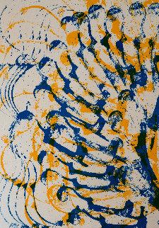 Cello Limited Edition Print - Arman Arman