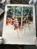 Aspen Glen 1998 Limited Edition Print by Michael Atkinson - 1