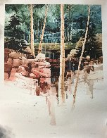 Aspen Glen 1998 Limited Edition Print by Michael Atkinson - 4