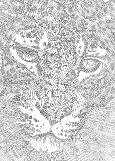 E'tude Leopard 2001 33x27 Drawing - Guillaume Azoulay