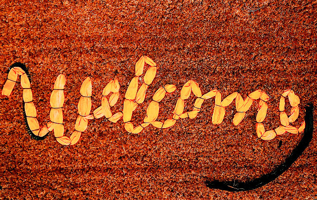 Welcome Mat Tapestry 2020 Tapestry by  Banksy