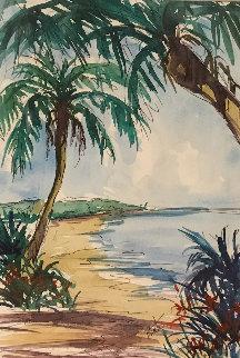 Untitled Watercolor  16x20 Florida Watercolor - Steve Barton