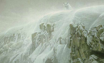 Arctic Cliff - White Wolves 1991 Limited Edition Print - Robert Bateman