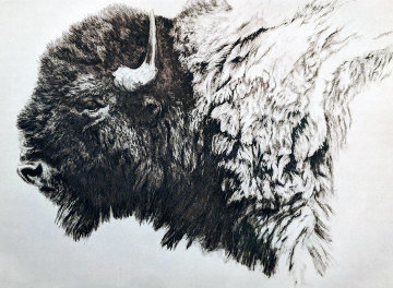 Bison Etching 2009 Limited Edition Print - Robert Bateman