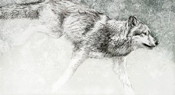 Wolf   2009 Works on Paper (not prints) - Robert Bateman