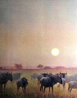 Wildebeest At Sunset 1975 Limited Edition Print - Robert Bateman