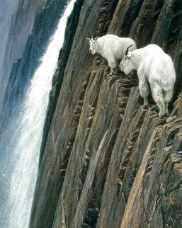 Sheer Drop - Mountain Goats Limited Edition Print - Robert Bateman