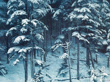 Descending Shadows - Timber Wolves 1995 Limited Edition Print - Robert Bateman