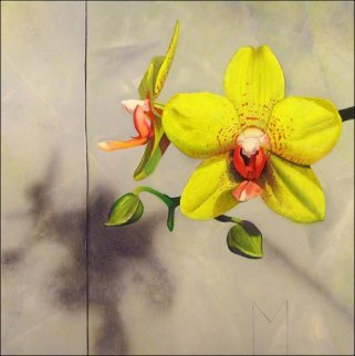 Yellow Orchids 2008 15x15 Original Painting by Matthew Bates