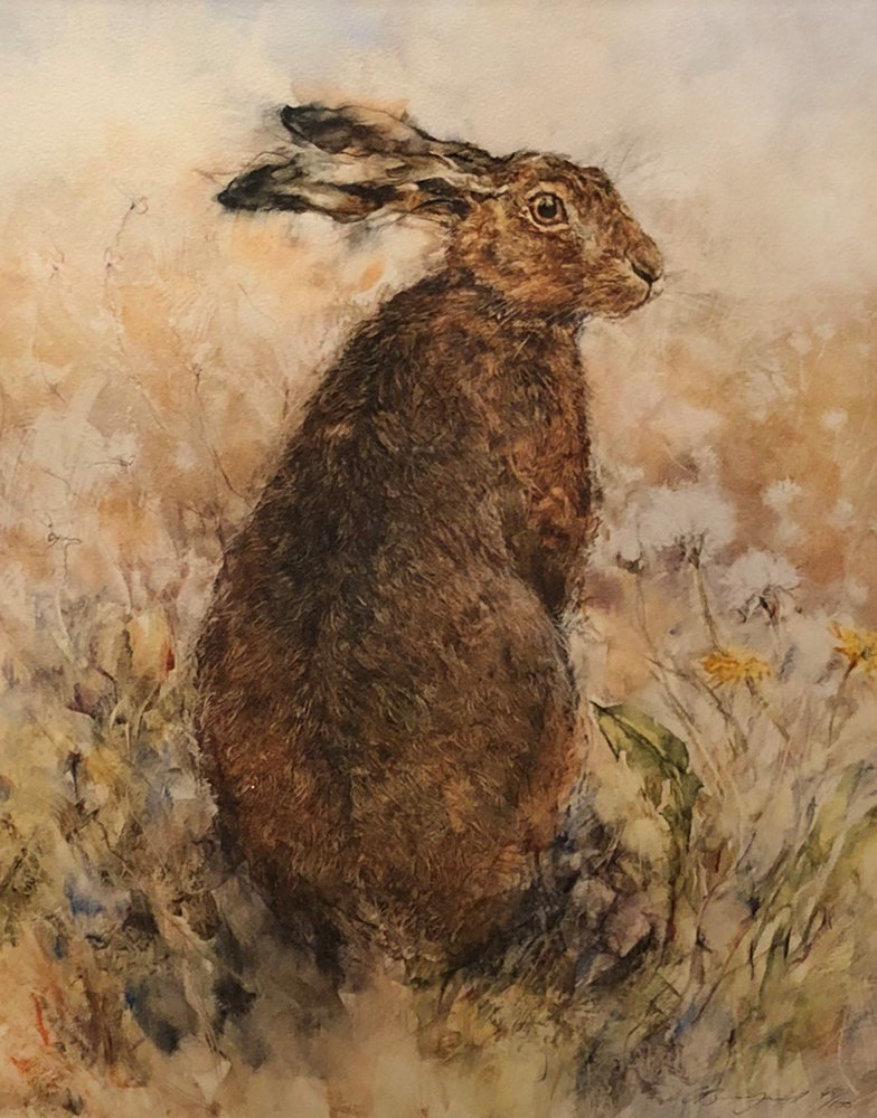 Curious Hare Limited Edition Print by Gary Benfield