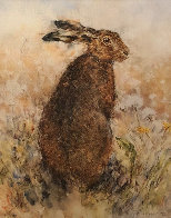 Curious Hare Limited Edition Print by Gary Benfield - 0