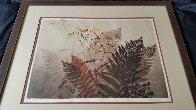 Ferns Limited Edition Print by Elton Bennett - 2