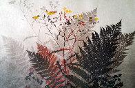 Ferns Limited Edition Print by Elton Bennett - 0