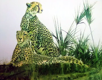 Wild Cheetahs AP Limited Edition Print by Andrew Bone
