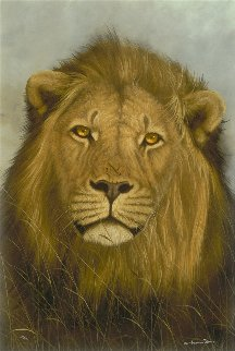 Prime Time 2012 Limited Edition Print - Andrew Bone