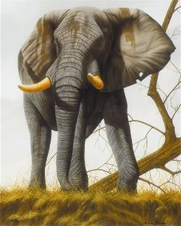 Overseer 2012 Limited Edition Print by Andrew Bone