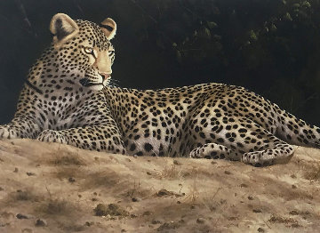 On the Sand Bank 2014 Limited Edition Print - Andrew Bone