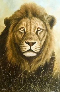 Prime Time 2014 Limited Edition Print by Andrew Bone