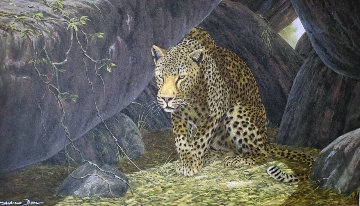 Untitled (Leopard) Limited Edition Print by Andrew Bone