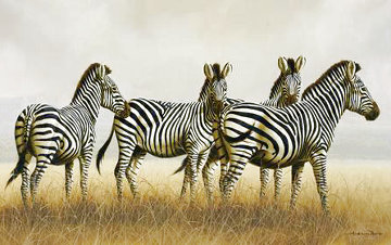 Patterns in the Grass 2006 Limited Edition Print - Andrew Bone