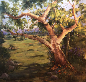 California Oak  48x48 Original Painting - Irene Borg