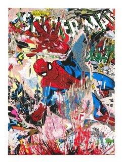 Spiderman 2019 Huge Limited Edition Print - Mr. Brainwash