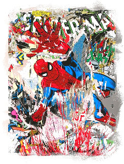 Spider Man 2019 Limited Edition Print - Mr. Brainwash