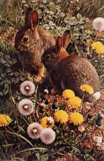 Colorful Playground - Cottontails 1986 Limited Edition Print by Carl Brenders