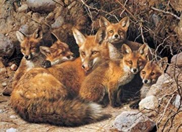 Full House Fox Family 1989 Limited Edition Print by Carl Brenders