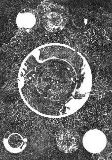 120 Mandala 1970 Limited Edition Print - Bruce Conner