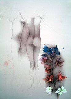 Orchideen Fuer John Limited Edition Print by Bruno Bruni