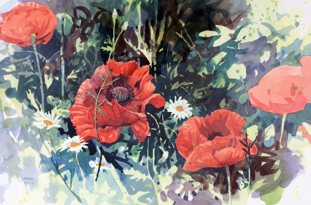 Poppies I Watercolor 1986 34x28 Watercolor by Simon Bull