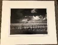 Ochopee Western Everglades  Panorama by Clyde Butcher - 1