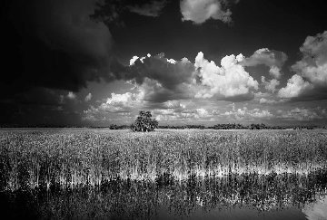 Ochopee Western Everglades  Panorama by Clyde Butcher
